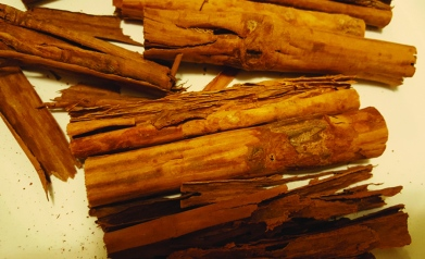 CinnamonSticks 1
